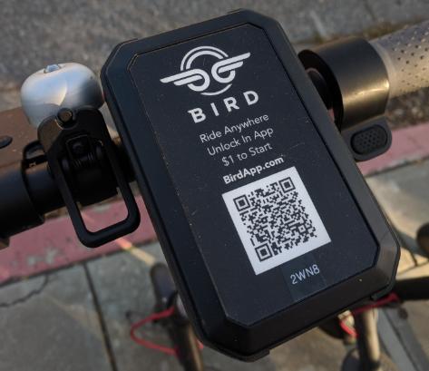 Bird scooter 3